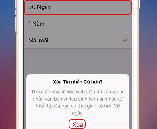 xoa-lich-su-cuoc-goi-tin-nhan-cu-tren-iphone-4